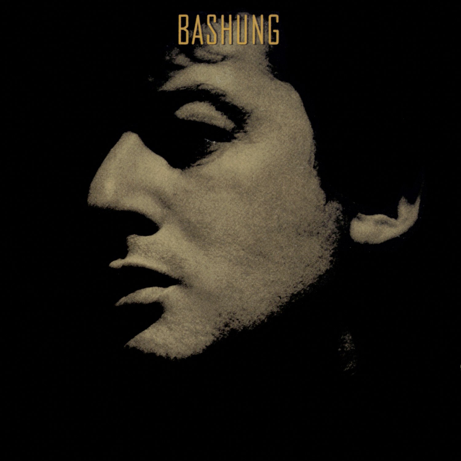Bashung Novice